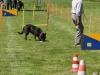 Hunderennen_2015 (106)